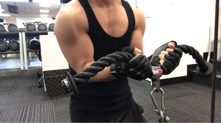 筋肉 腕 の